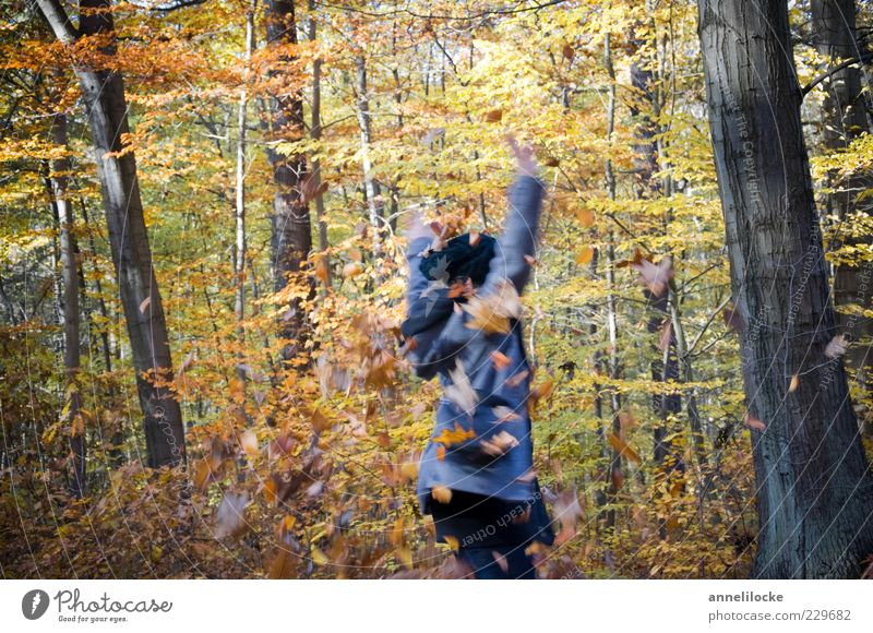 Human being Nature Youth (Young adults) Joy Leaf Adults Forest Yellow Autumn Playing Freedom Dance Leisure and hobbies Trip Happiness