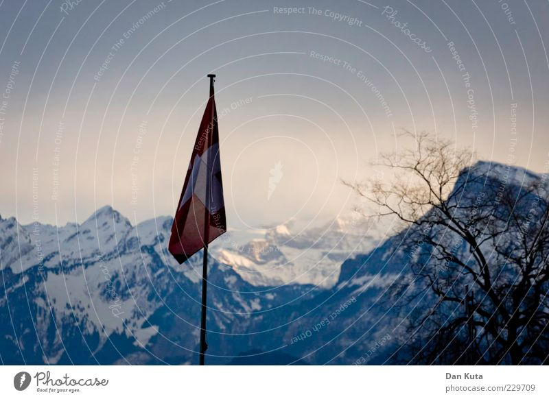 Winter off the peg Landscape Sunlight Ice Frost Snow Mountain Mount Säntis Snowcapped peak Flag Flagpole Switzerland Cold Blue Suspended Branchage
