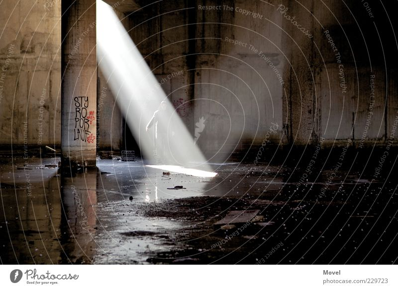 teleporters Ruin Tunnel Manmade structures Cellar Water Sign Graffiti Discover Illuminate Cool (slang) Dark Fluid Bright Cold Brown Gold Black Moody Curiosity