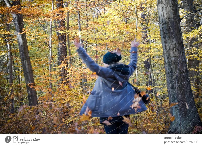Human being Nature Youth (Young adults) Joy Leaf Adults Forest Yellow Autumn Feminine Playing Freedom Dance Leisure and hobbies Trip