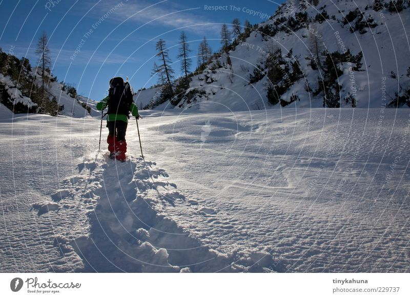 Human being Nature Blue White Vacation & Travel Joy Winter Cold Snow Landscape Freedom Mountain Movement Glittering Trip Tall