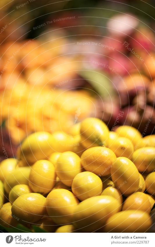 shaky Food Fruit Nutrition Organic produce Vegetarian diet Lie Exceptional Exotic Healthy Juicy Sour Multicoloured Yellow Markets Covered market Market day