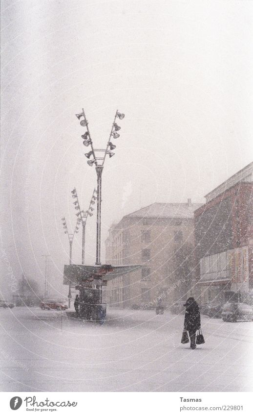 Human being Woman House (Residential Structure) Adults Cold Snow Snowfall Facade Street lighting Storm Bus Paper bag Passenger traffic Snowstorm Public transit Bus stop