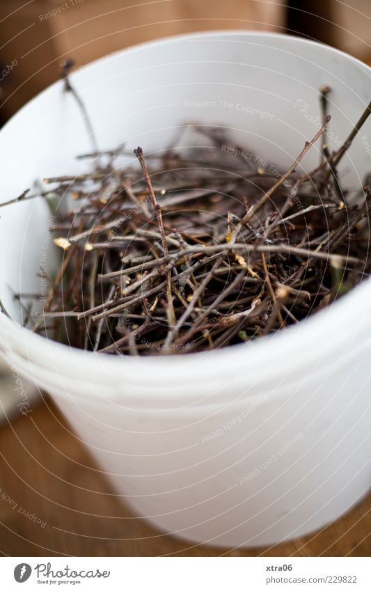 White Wood Round Thin Collection Twig Bucket Twigs and branches Contents Biomass Biogradable waste