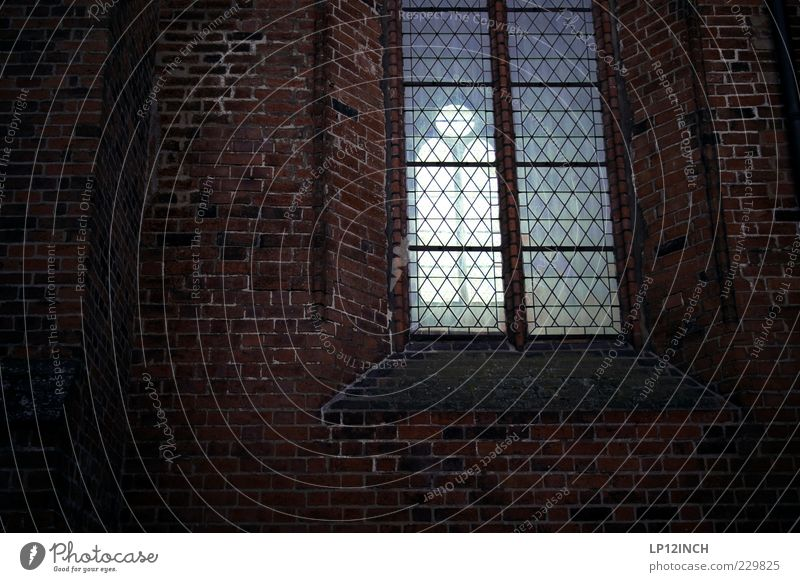 closed place Funeral service Baptism Luneburg Germany Europe Deserted Church Wall (barrier) Wall (building) Window Tourist Attraction Hope Belief Sadness Grief
