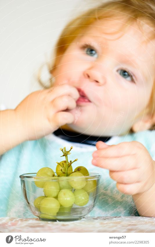Child Human being Healthy Eating Girl Food Fruit Fresh To enjoy Sweet Delicious Toddler Vegetarian diet Fruity Bunch of grapes
