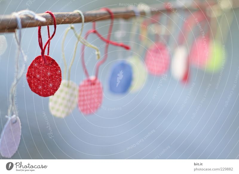 Calm Colour Arrangement Decoration Round Cloth Branch Kitsch Easter String Sign Row Idea Collection Hang Stick
