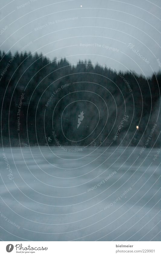 Sky Water Tree Winter Calm Environment Dark Landscape Emotions Grass Lake Wind Fog Bushes Drop Haze