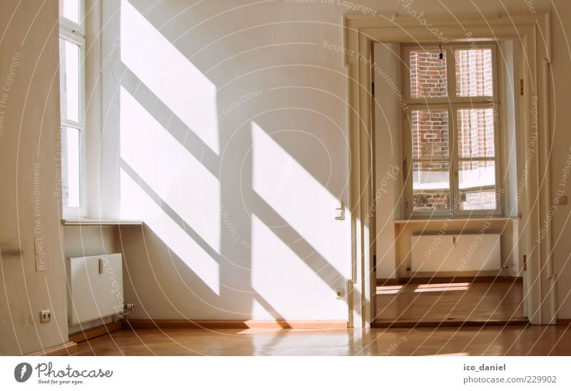 Old Beautiful Calm Yellow Window Wall (building) Style Warmth Wall (barrier) Bright Door Room Elegant Flat (apartment) Interior design