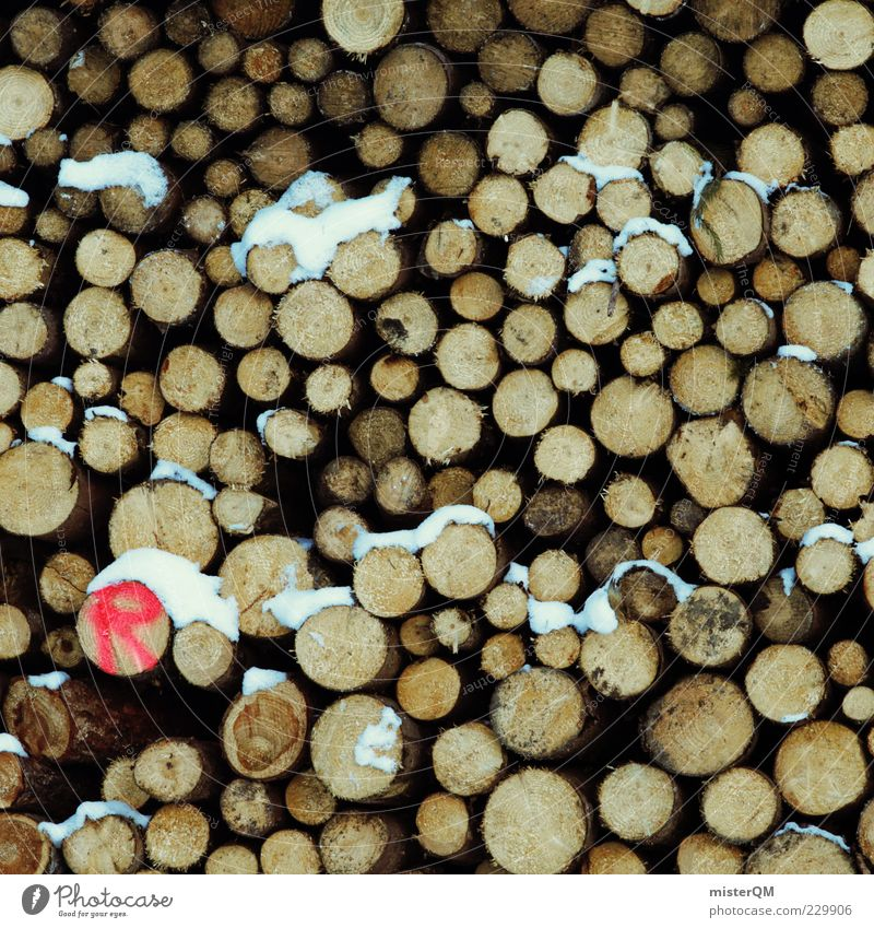 (R) Wood Tree trunk Many Pattern Supply Fallen Environmental damage Logging Climate change Stack of wood Consecutively Arrangement Brown Resource Forstwald Red