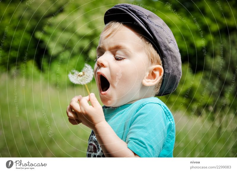 Child Human being Nature Plant Landscape Tree Flower Animal Environment Movement Grass Boy (child) Playing Garden Flying Masculine