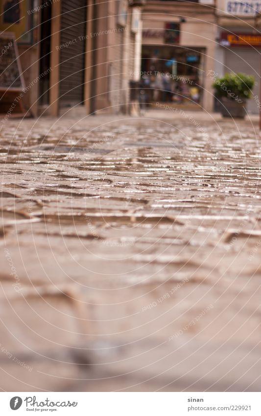 Gray Rain Brown Contentment Esthetic Climate Village Store premises Cobblestones Spain Puddle Capital city Paving stone Old town Window box Palma de Majorca