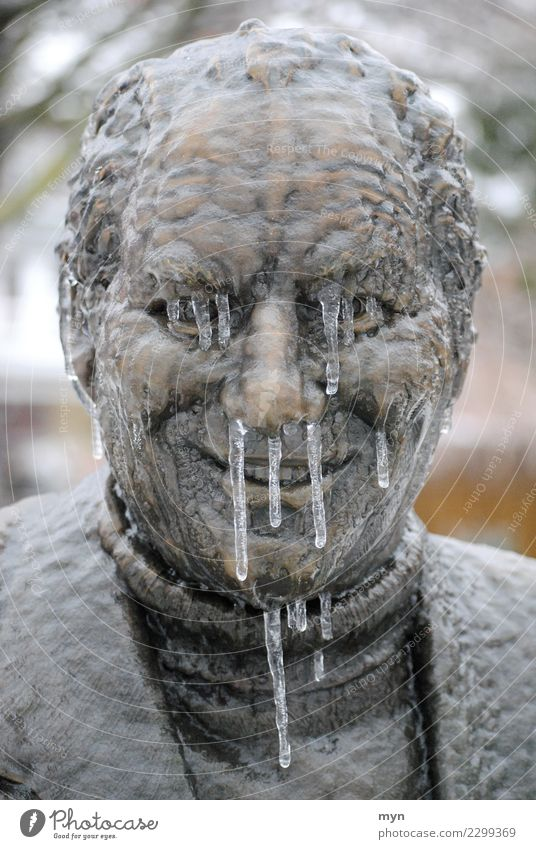 Human being Man Winter Face Adults Cold Healthy Head Metal Ice Smiling Nose Climate Drop Monument Illness
