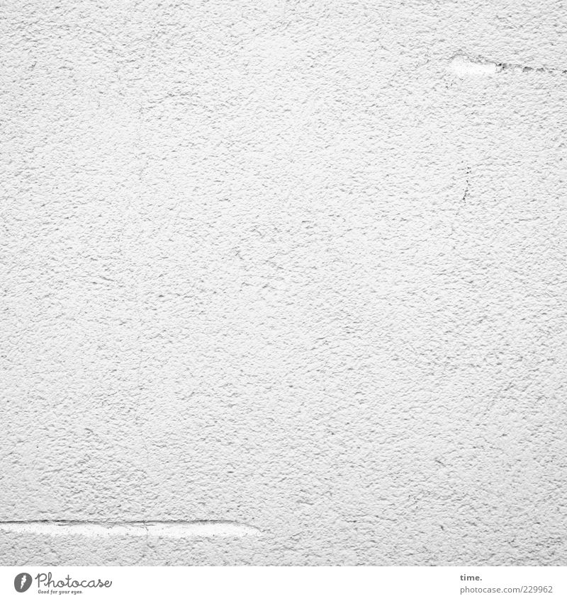 Lifelines #22 Wall (barrier) Wall (building) Esthetic Simple Elegant Friendliness Bright Natural Positive Clean Thin White Authentic Purity Complex Stagnating