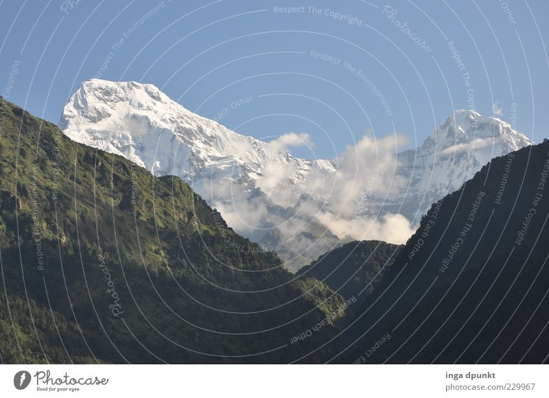 fishtail Far-off places Freedom Mountain Nature Landscape Sky Ice Frost Rock Peak Snowcapped peak Glacier Climate Climate change Exceptional Large Tall