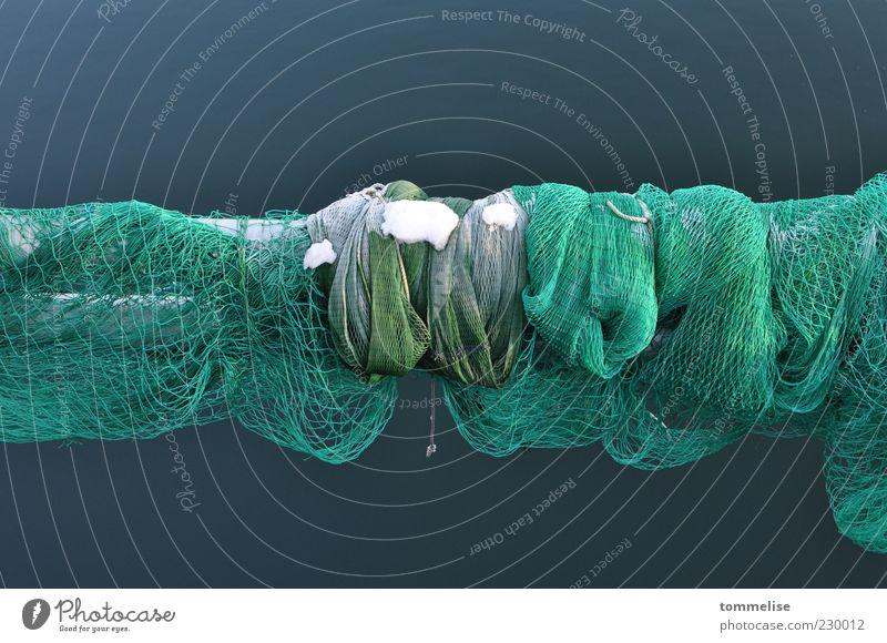 No network coverage Green Calm Net Fishing net Fishery Snow Winter Cold Colour photo Exterior shot Deserted Day Copy Space top Copy Space bottom Loop Detail