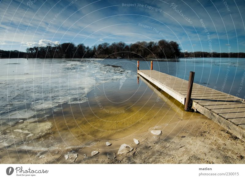 ice-free Landscape Sand Water Sky Clouds Sunlight Spring Beautiful weather Ice Frost Lakeside Bay Deserted Bright Blue Yellow Spring fever Forest Island
