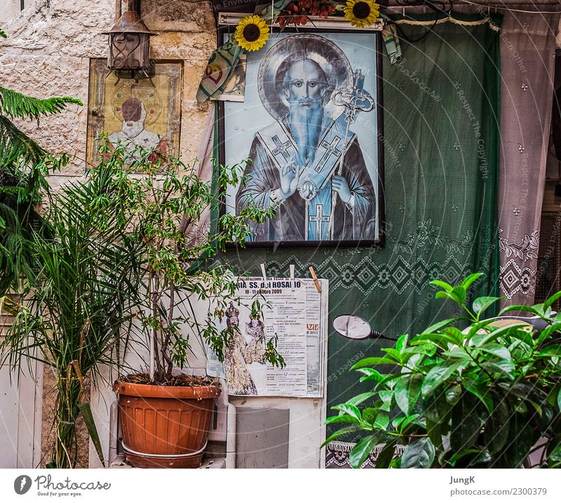 Looking back 2 City trip Everyday Culture Southern Italy Old town House (Residential Structure) Wall (barrier) Wall (building) Facade Window Authentic Simple