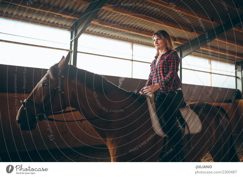 mature woman is practicing riding with her horse a royalty free