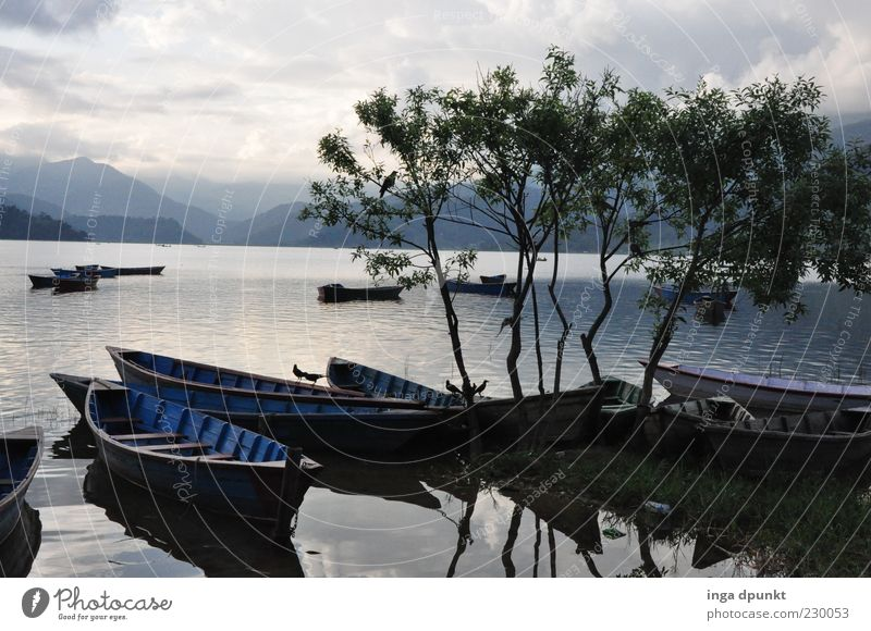 Lake Pokhara Rowboat Environment Nature Landscape Air Water Autumn Bad weather Tree Mountain Coast Lakeside Relaxation Dream Simple Purity Modest Wanderlust