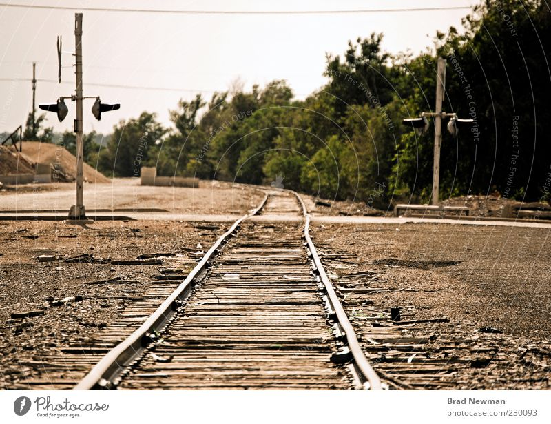 "Tracks Nature Landscape ""Amarillo Texas"" Outskirts Railroad Railroad tracks Brown Green Colour photo Exterior shot Central perspective"