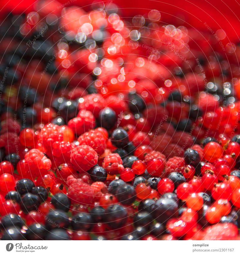 wild berries Food Fruit Cake Dessert Jam Nutrition Organic produce Vegetarian diet Healthy Healthy Eating Fresh Juicy Raspberry Blueberry Redcurrant Berries