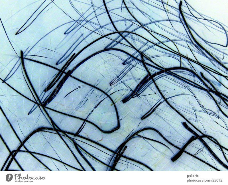Blue Style Line Photographic technology Light blue