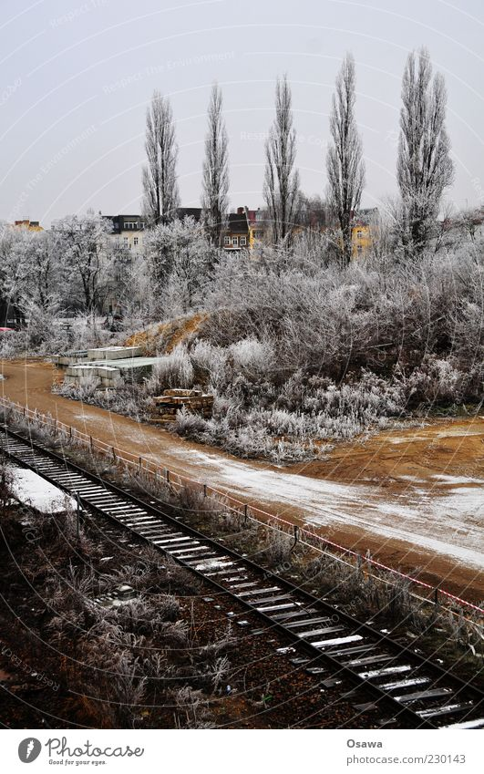 Sky White Tree Winter Cold Snow Gray Ice Gloomy Construction site Bushes Railroad tracks Hoar frost Covered Portrait format Ostkreuz