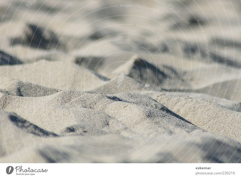 Nature Summer Beach Calm Relaxation Environment Gray Sand Brown Esthetic Authentic Elements Hill Desert Dry Beach dune