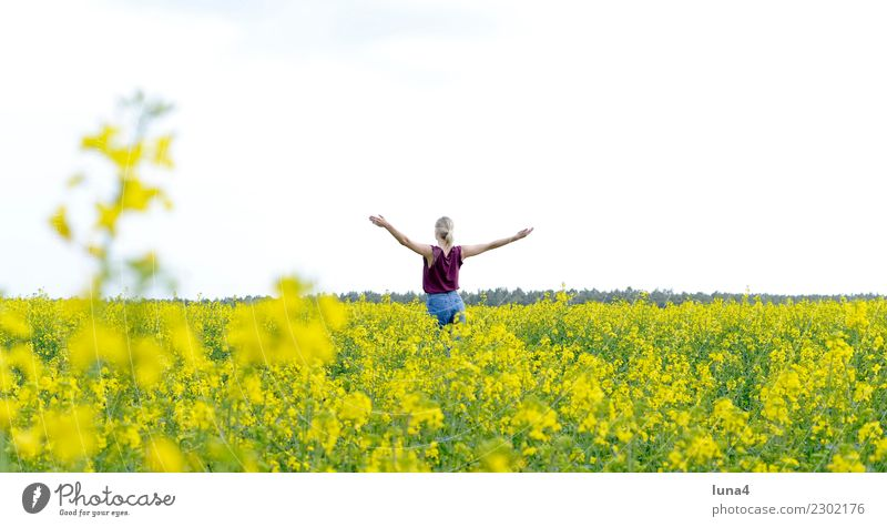 freedom Joy Happy Beautiful Contentment Relaxation Freedom Summer Success Young woman Youth (Young adults) Woman Adults Nature Spring Field Blonde To enjoy