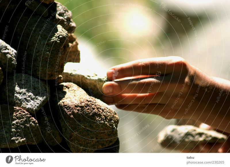 handsomes Summer Hand Fingers Rock Stone Brown Gray Green Movement Calm Environment Colour photo Exterior shot Light Shadow Sunlight To hold on 1 Copy Space top