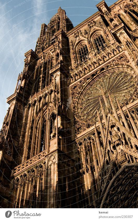 Strasbourg Cathedral Old town Church Manmade structures Building Architecture Strasbourg cathedral Facade Tourist Attraction Landmark Sandstone Large Bright