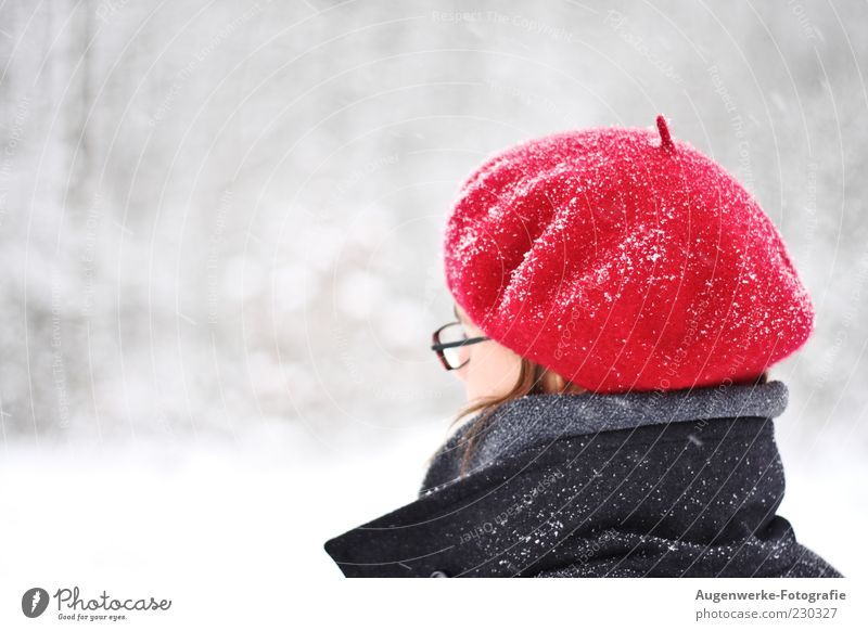 Human being Youth (Young adults) Red Winter Adults Head Snowfall 18 - 30 years Young woman Cap Person wearing glasses Beret Protection against the cold