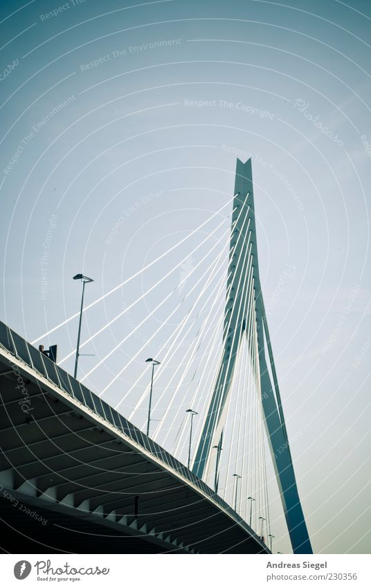 Blue Transport Modern Bridge Exceptional Beautiful weather Connection Traffic infrastructure Street lighting Netherlands Cloudless sky Vignetting Rotterdam Cable-stayed bridge
