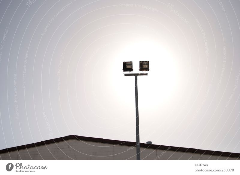 backlight Environment Sky Sun Beautiful weather Illuminate Bright Floodlight Dazzle Silhouette Roof Pitch of the roof 2 In pairs Black White Gray Colour photo