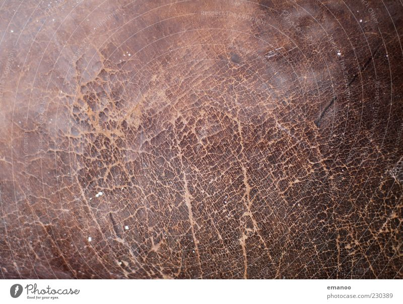 Old Dark Brown Broken Cloth Soft Hide Firm Fat Box Crack & Rip & Tear Surface Smoothness Equipment Leather Hard