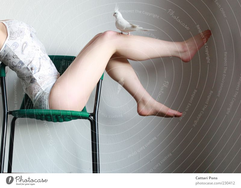 Human being Woman Youth (Young adults) Green White Animal Young woman Adults Feminine Legs Feet Lie Bird Body Sit Stand