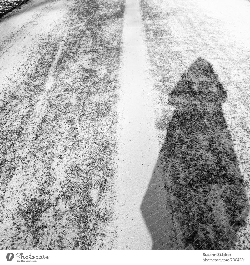 Ice Stand Asphalt Fat Foreign Self portrait Modest Invisible Traffic lane Lane markings Unidentified Dark side To distance Skittle Bedding Gritting material