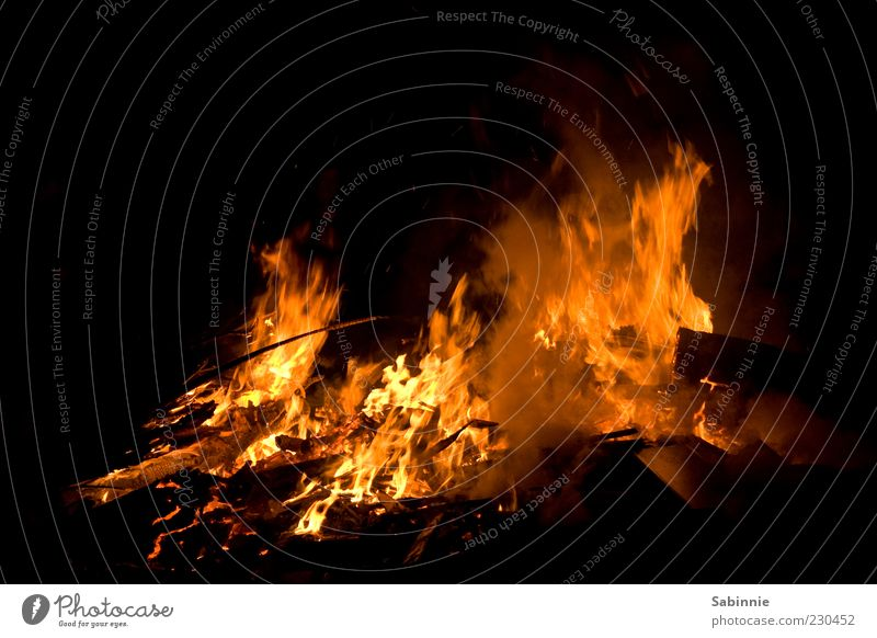 Bonfire Night Fire Wood Coal Dark Burn Wind Fireplace Camp fire atmosphere Colour photo Multicoloured Exterior shot Detail Deserted Light Shadow Contrast