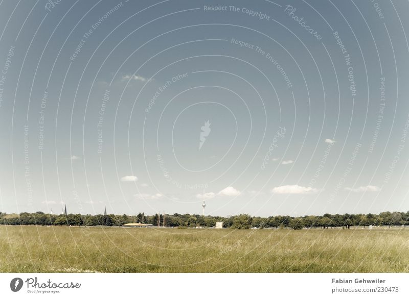 urban steppe Relaxation Calm Capital city Television tower Esthetic Far-off places Free Blue Sky Meadow Berlin Exterior shot Deserted Copy Space top Long shot