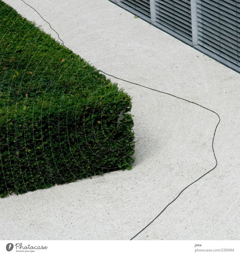 cord Garden Park Deserted Architecture Wall (barrier) Wall (building) Terrace Accuracy Cable Bushes Hedge Design Puristic Line String Meandering Lanes & trails