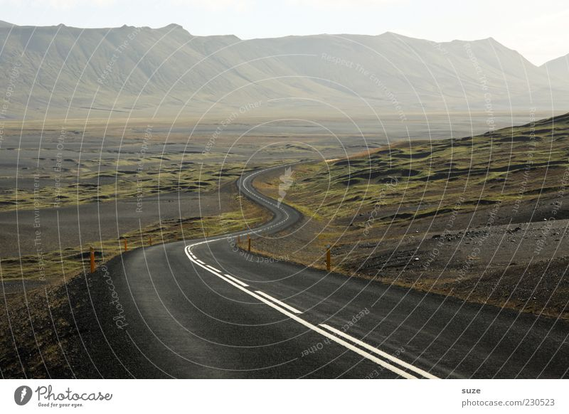 Nature Loneliness Street Environment Landscape Freedom Mountain Lanes & trails Fog Transport Uniqueness Travel photography Target Asphalt Iceland Curve