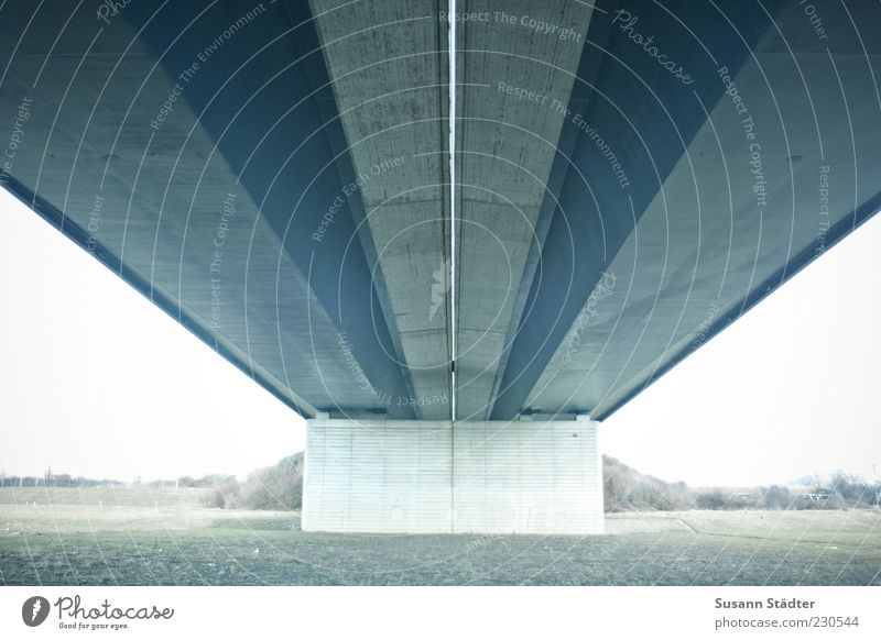 wing path bridge Bridge Highway Bridge pier Concrete wall Wall (barrier) Meadow Roof Under a bridge Arm Day Light Contrast Worm's-eye view Central perspective