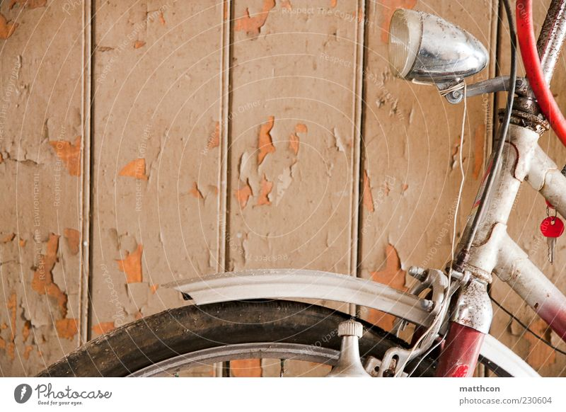 Diamond from the front Bicycle Wood Metal Old Retro Red White Decline Past Transience Colour photo Interior shot Day Lamp Guard Wheel Tire Wooden facade