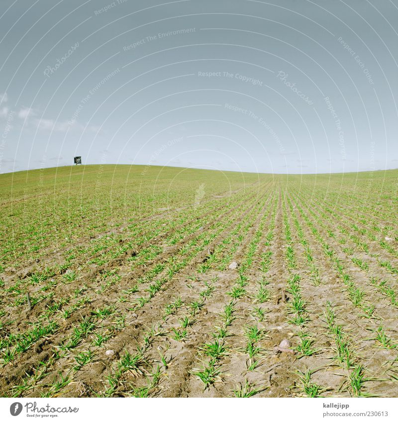 Sky Nature Green Far-off places Environment Landscape Spring Work and employment Horizon Field Earth Climate Hill Profession Beautiful weather Economy