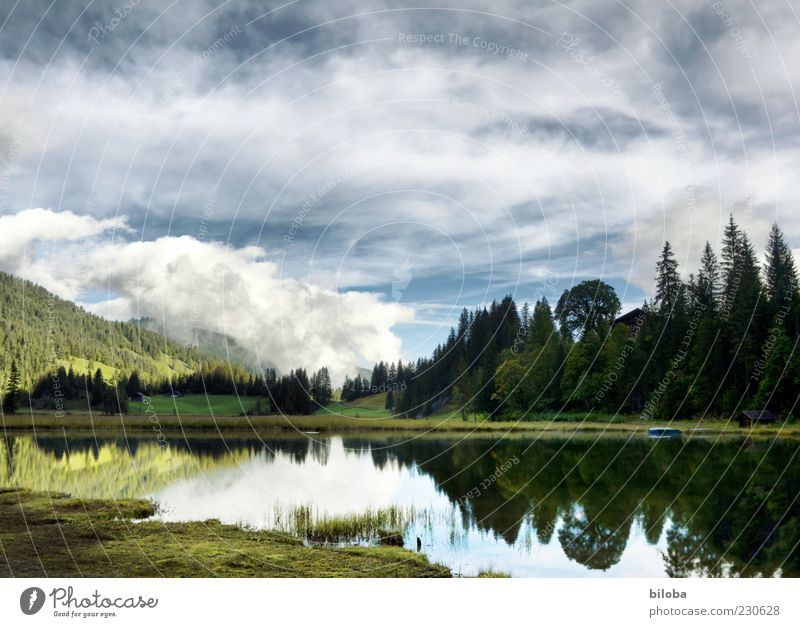 Lauenensee Nature Landscape Clouds Spring Lakeside Blue Green White Loneliness Uniqueness Idyll Reflection Forest HDR Deserted Copy Space top Morning