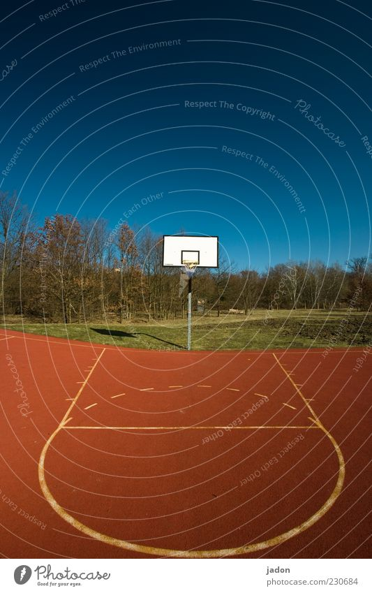 Blue White Red Line Places Circle Stripe Plastic Playing field Beautiful weather Basket Basketball Playground Blue sky Cloudless sky Basketball basket
