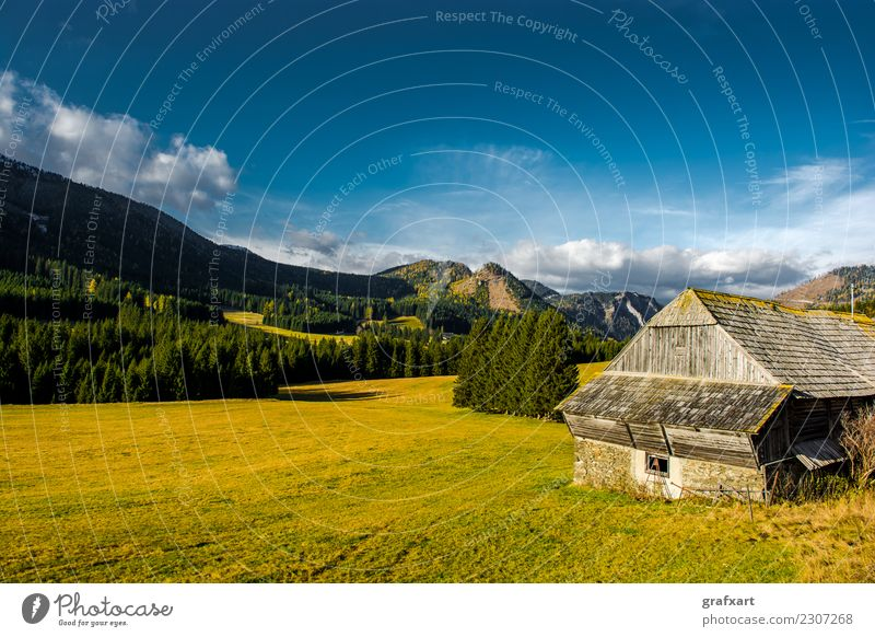 Rural landscape with mountains in Austria Alpine Farm Tree Mountain Europe Rock Forestry Peaceful House (Residential Structure) Autumn Climate Landscape