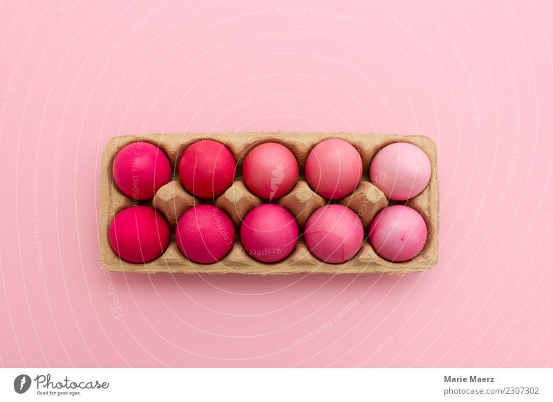 Easter eggs nicely colored Food Egg Style Design Eating Feasts & Celebrations Lie Esthetic Exceptional Fresh Hip & trendy Round Beautiful Pink Hospitality
