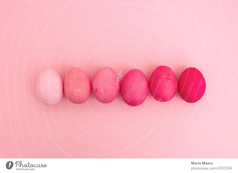Gradient with Easter eggs Beautiful Colour Dye Style Feasts & Celebrations Pink Design Bright Lie Esthetic Creativity Joie de vivre (Vitality) Uniqueness